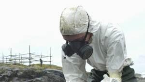 Mehr als 15.000 Seevögel durch Ölpest verendet