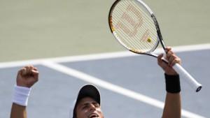 Djokovic besiegt Hitze und Ferrer