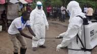 Neue Ebola-Fälle