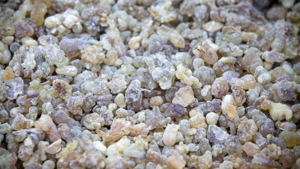 Weihrauchindustrie - Anbau, Ernte und Handel von Weihrauch