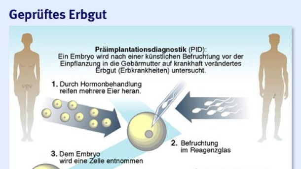 Infografik / Präimplantationsdiagnostik / Geprüftes Erbgut (Version 1)