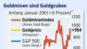 Der große Goldrausch