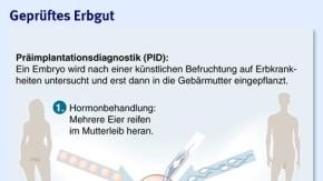 Infografik / Präimplantationsdiagnostik / Geprüftes Erbgut (Version 2)