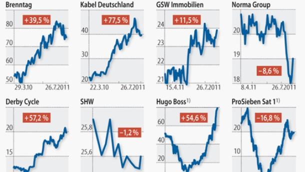 Viele Börsenneulinge aus Private-Equity-Hand
